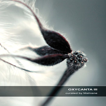 Oxycanta ©by Mahiane (Ultimae)