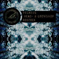 pegasus rostock headshop growshop