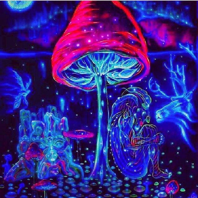 82762-Magic-Mushrooms
