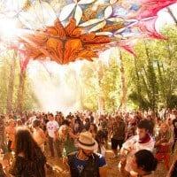 connection festival