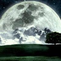 moonlight open air
