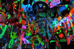 roberdo asks: neon party toys