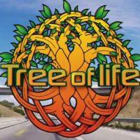 Tree of life header