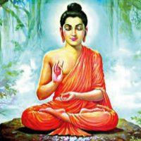 karma healing abc