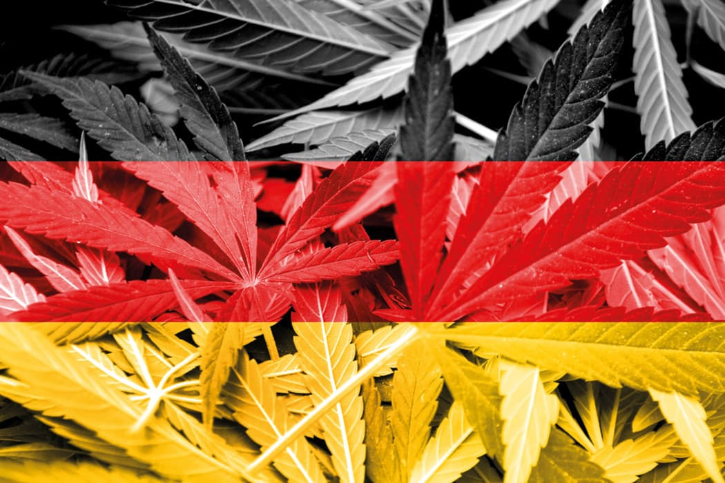 World Wide Weed – Cannabis Legalisation in Germany