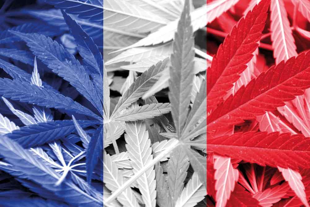 frankreich flagge cannabis