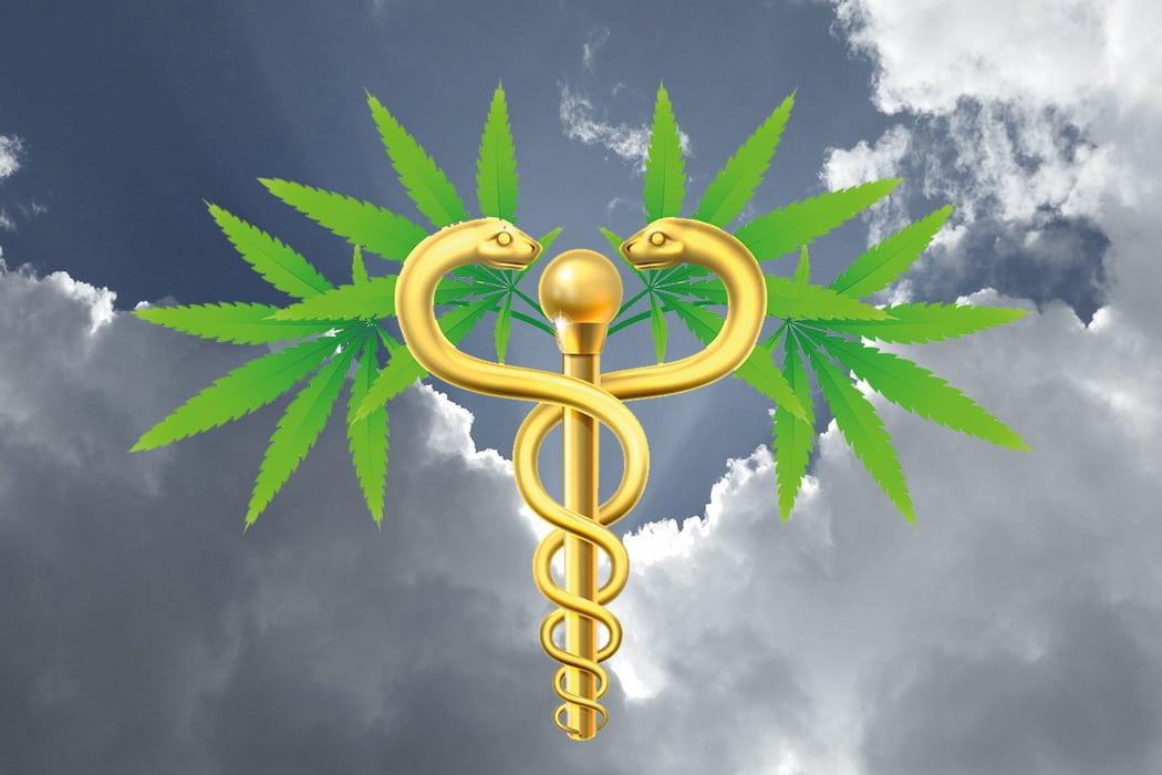 Freud & Leid: Was bringt  das neue Cannabismedizingesetz?