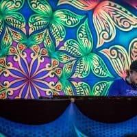 Experience Festival (c) Danny Apnea Martens